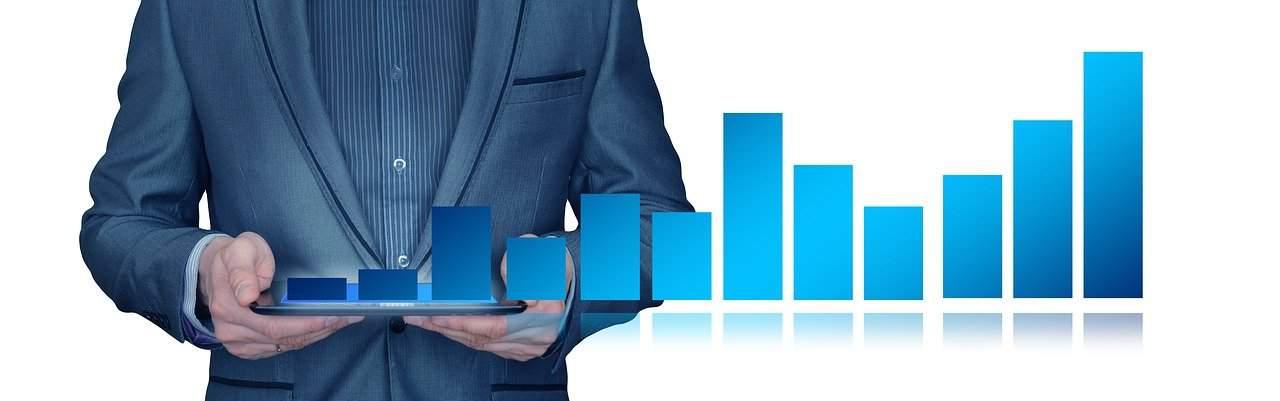 סטטיסטיקה הכנסות